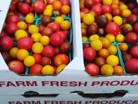 Heirloom Cherry Tomatoes
