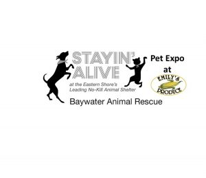 Pet Expo Benefitting Baywater Animal Rescue