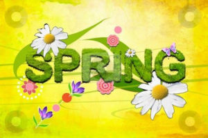 Spring Craft & Gift Fair