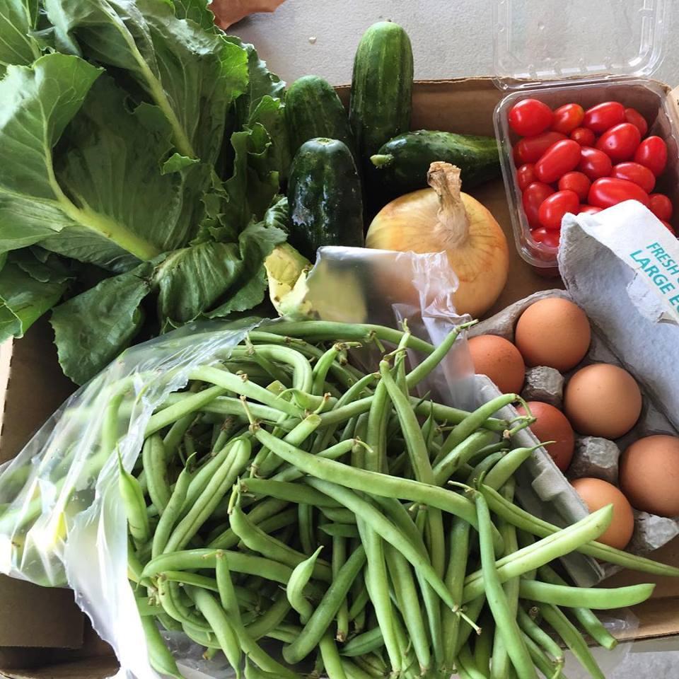 CSA – A Farm to Table Partnership
