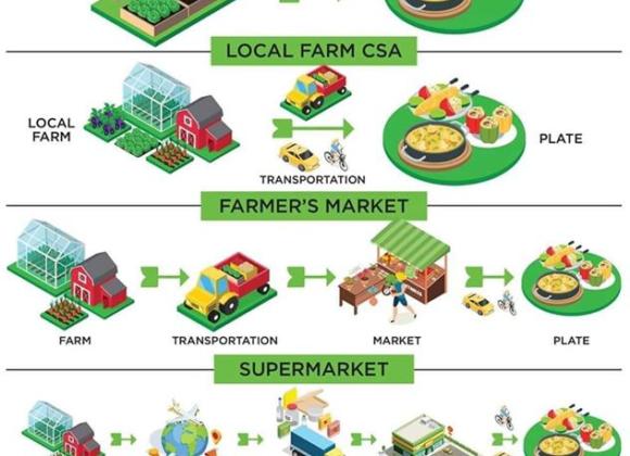 Shorten the Supply Chain