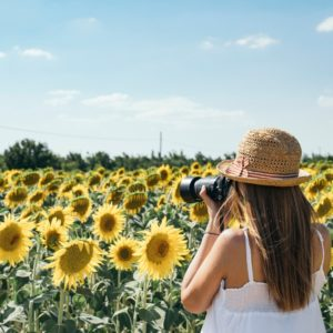 Professional Photography Sessions in the Sunflowers
