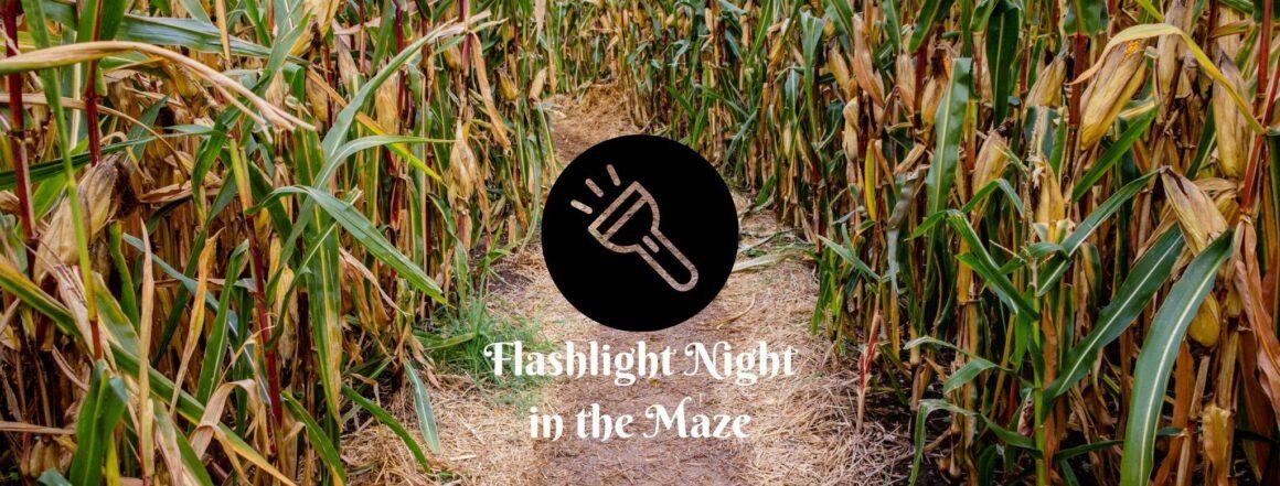 Flashlight Night in the Maze