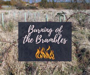 Burning of the Brambles @ Emily's Produce